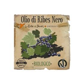 Olio di Ribes Nero Le Erbe di Janas